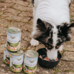 Bellfor Lieblingsmenü Freilandmenü Huhn
